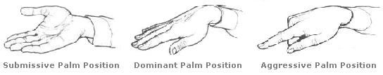 Palm Positions